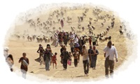 Displaced-people-from-minority-Yazidi-sect-fleeing-violence-from-forces-loyal-to-Islamic-State-in-Sinjar-town-walk-towards-Syrian-border-on-outskirts-of-Sinjar-mountain_1407774996411851